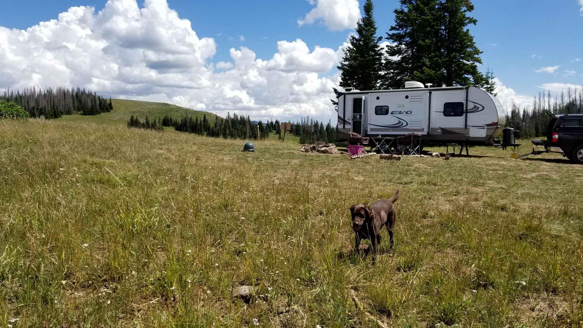 Boondocking on Duchesne Ridge, Utah
