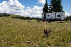 Boondocking on Duchesne Ridge, Utah