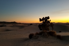 Sunset over Little Sahara